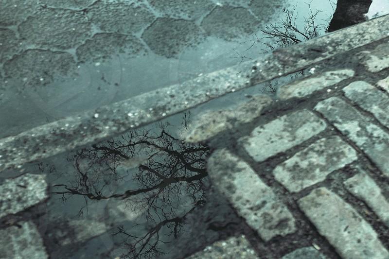 grey brick sidwalk photo