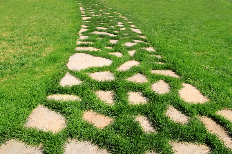 stone path in green grass garden texture vanishing perspective photo