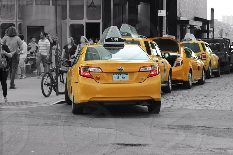 Taxi lineup 1 photo