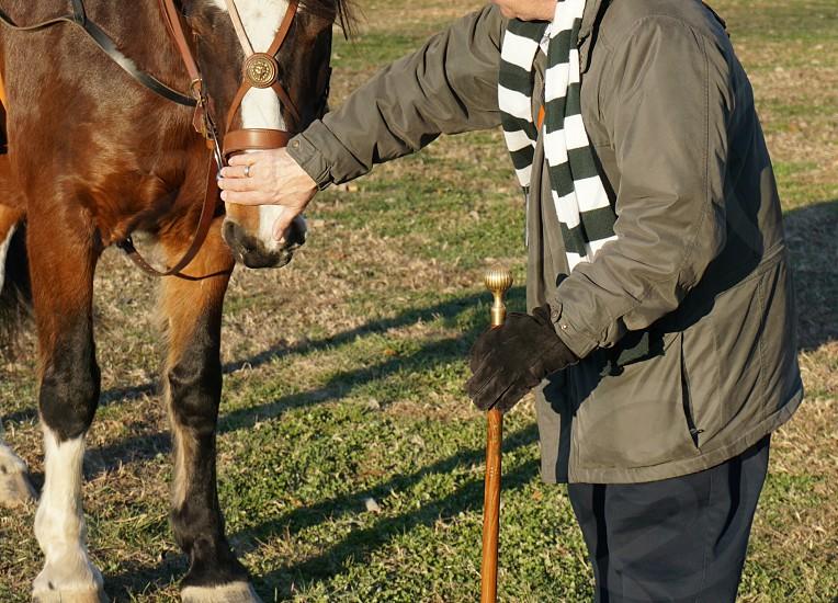 man in grey bubble jacket holding horse photo
