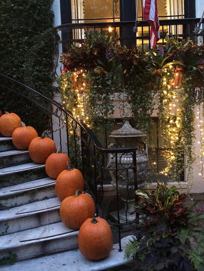 A beautiful house in Savannah all set for Fall.  photo