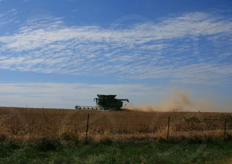 Farm fresh agriculture photo