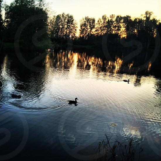 Twin lakes sunset photo