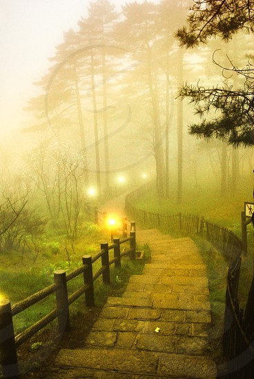 A foggy morning in Huangshan Mountain China photo
