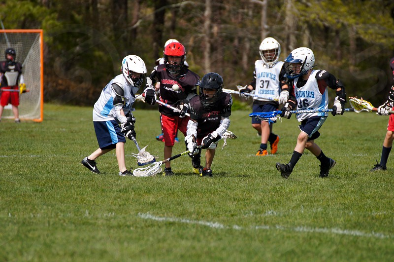 kids lacrosse photo
