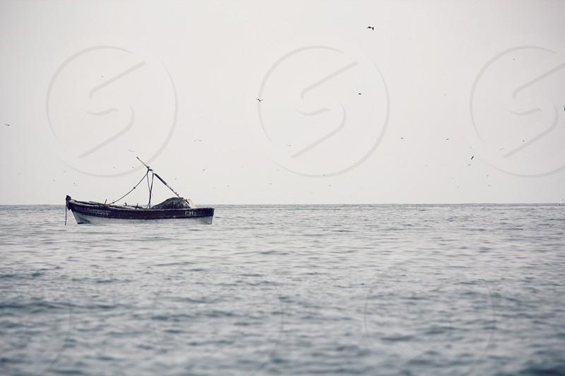 boat fishing seagulls sea ocean work adrift sail sailing  photo