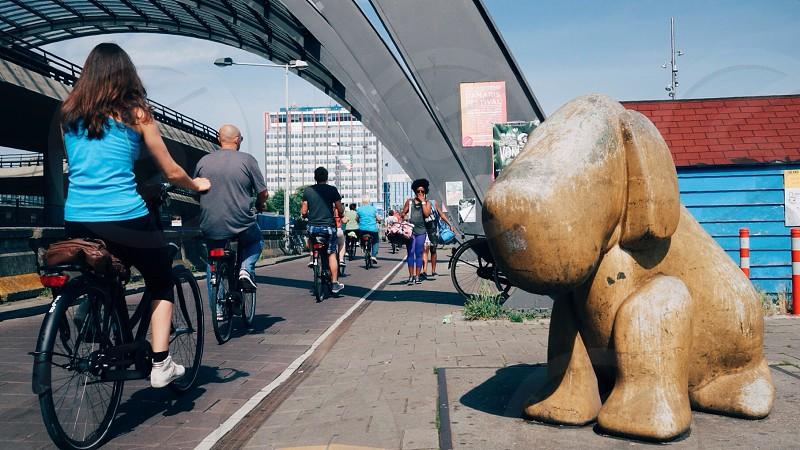 Bicycle sidewalk urban dog statue pavement amsterdam centraal cycling bike photo