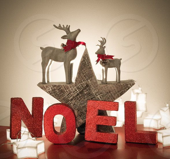Christmas decorations.   Red glitter Noel two reindeer and a wooden star with star lights.  photo