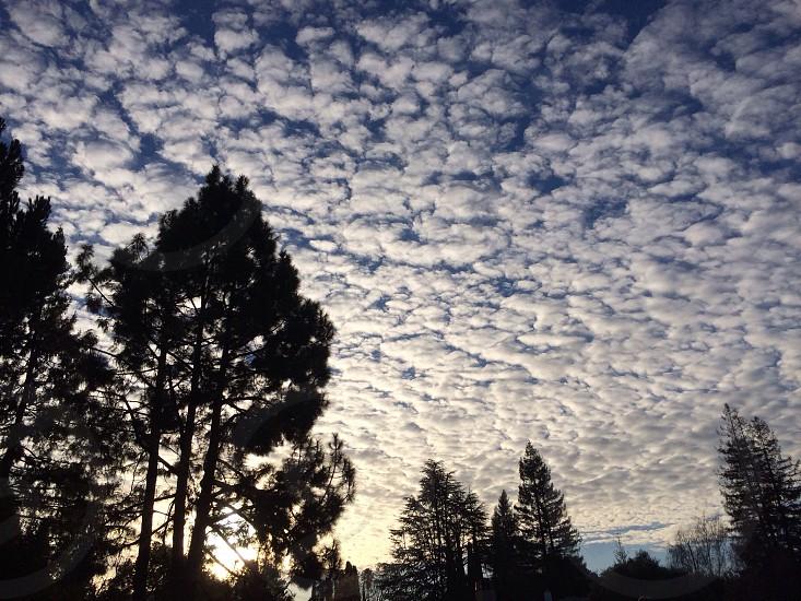 Cloud filled sky at dusk  photo