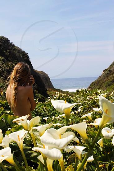 Garrapata Beach in Big Sur CA photo