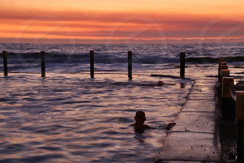 Pool swimmer swimming morning  photo