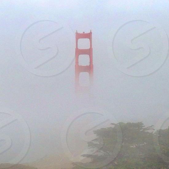 Golden Gate Bridge in the fog photo