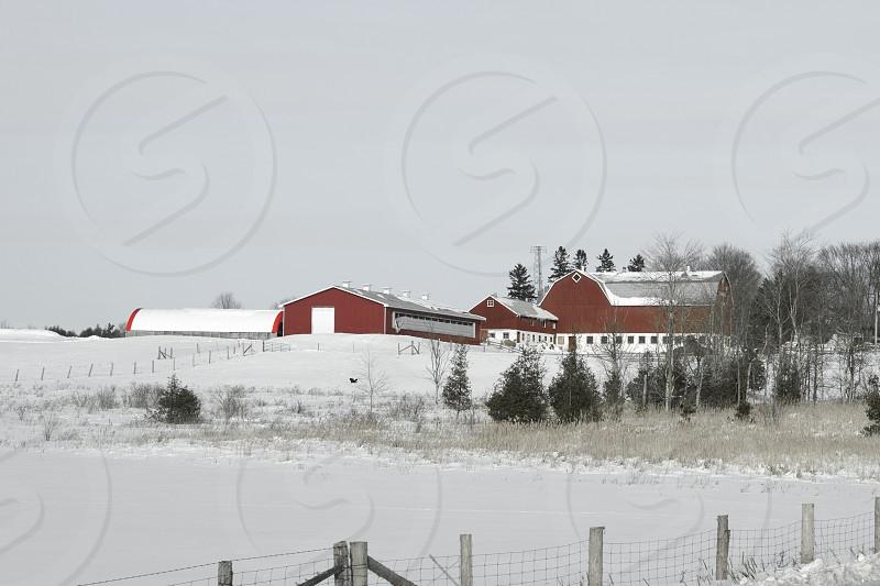 Red Barn in Farm Field - Winter photo