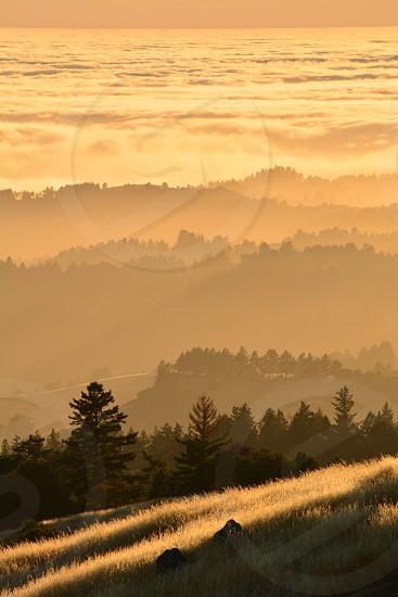 Fog rolling into the Santa Cruz Mountains during sunset - La Honda CA photo