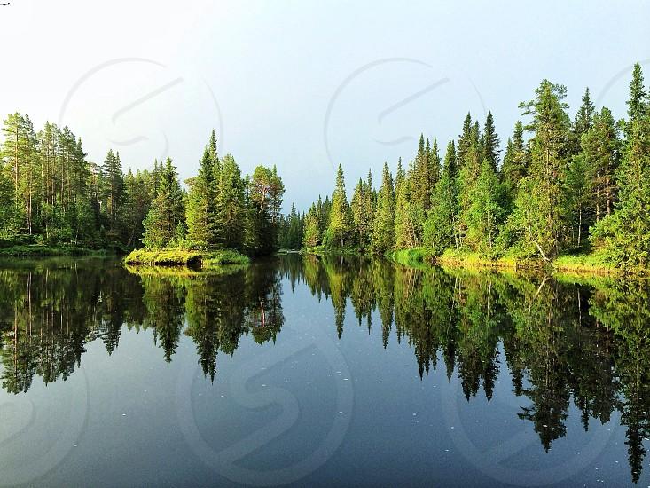 lake and green tree photo