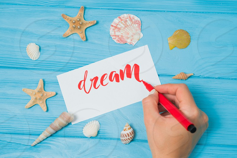 Dream text. Font of lettering motivational word on white canvas with red ink by calligrapher. Seashells and sea stars frame. Graphic design handwriting creation concept. photo