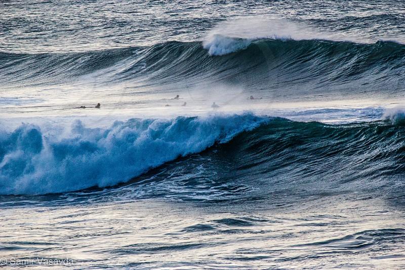 Big wave surfing in Maui Hawaii photo