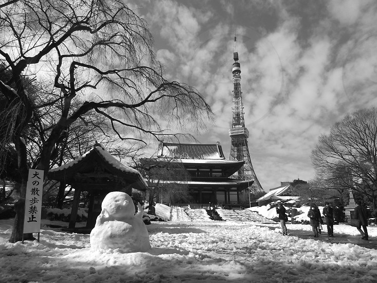 black and white photo of tower near temple photo