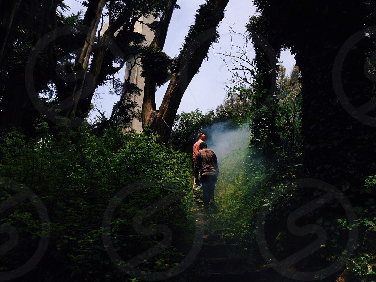 man walking in green forest photo