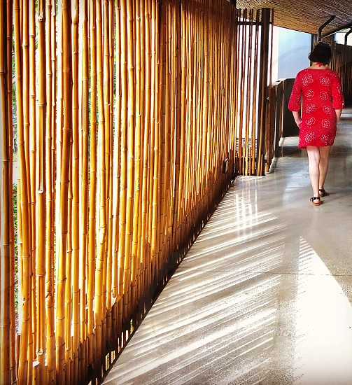 Angle person woman back red dress walk shade fence  photo