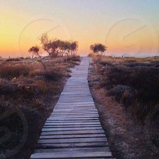 A path in Kos Island Greece photo