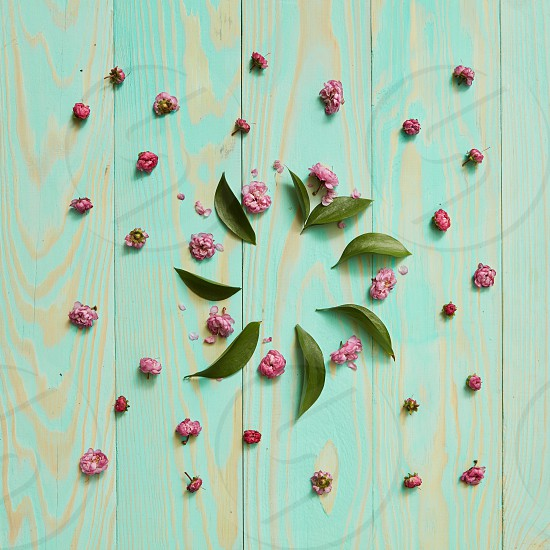 Round frame of flowers and leaves on a wooden blue background flat lay photo