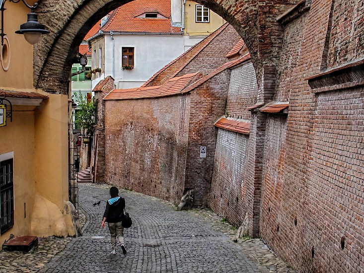 Stairs passage - Sibiu ( European Capital of Culture 2007 ) Romania 400m 16-06-2014 photo