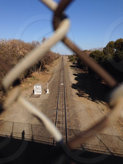 brown train rail and green tall trees photo