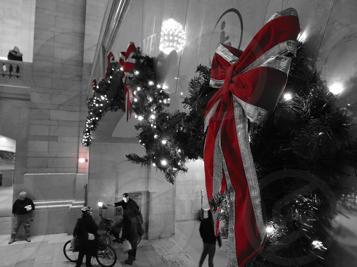 selective color photography of red and gray Christmas bows photo