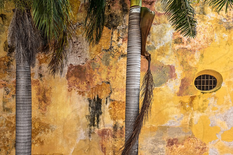 Colorful rustic wall in Cartagena Colombia  photo