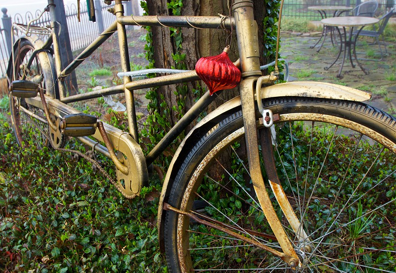Bicycle. Antique. Vintage. Ornament. photo