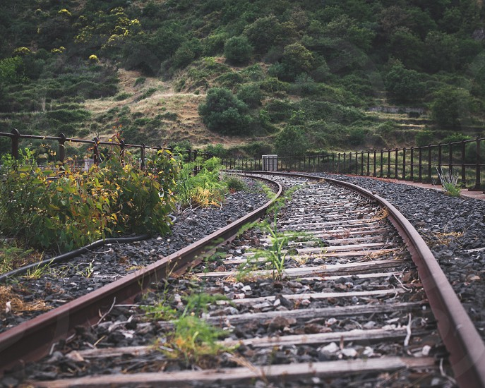 abandoned railroad track photo