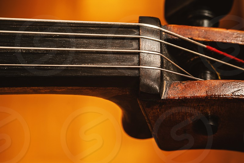 Details of an old dusty cello closeup view on strings and body. photo