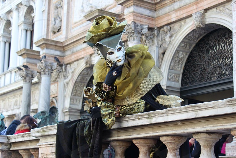 Venice - Carnival  photo