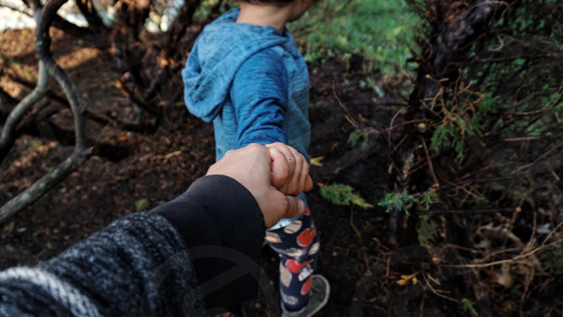 Holding hands mother son adventure explore woods photo