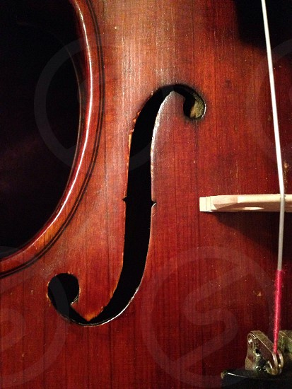 closeup photo of brown string instrument photo