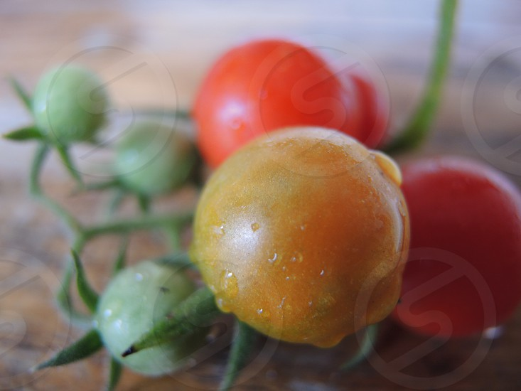 orange and green tomatoes photo
