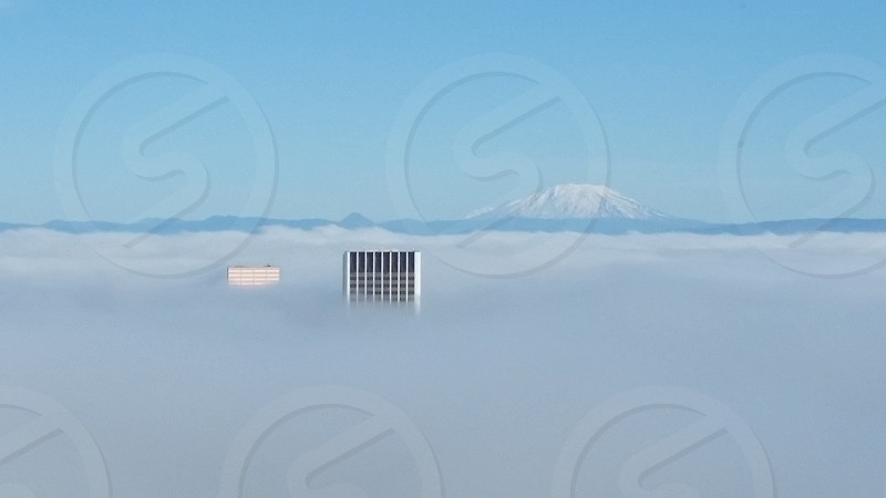 Portland Oregon in the fog photo