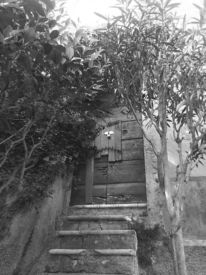 Quaint old door. photo