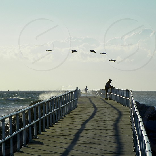 Ponce Inlet Jetty. Florida. Stripes shadows pelicans and waves photo