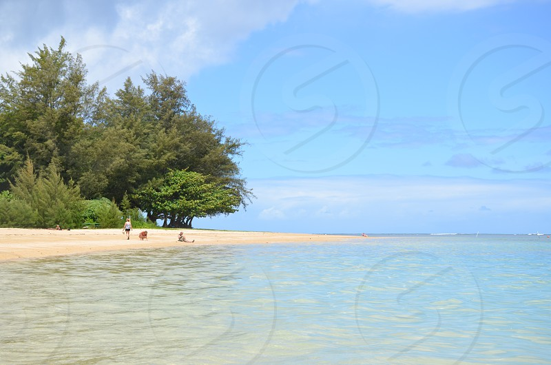 Hawaii clear water travel nature vacation calming Kauai photo
