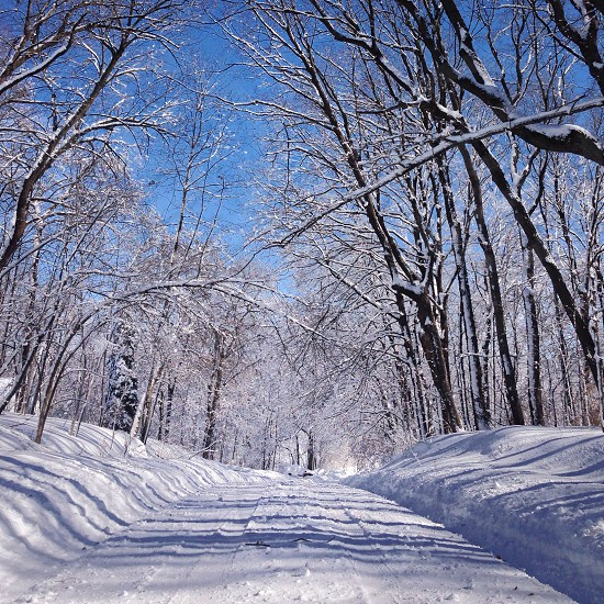 snow filled road photograph photo