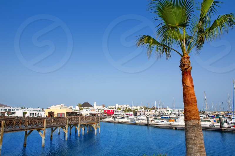 Lanzarote Marina Rubicon port at Playa Blanca in Canary Islands photo