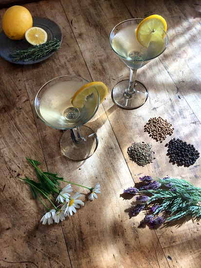 Gin martini on a wooden table with lavender chamomile black pepper coriander and fennel seeds photo