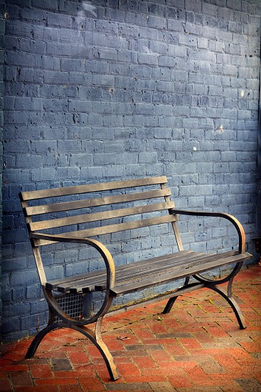 A bench. Colors of Savannah  photo