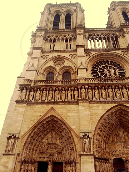 notre damme Cathedral architecture photo