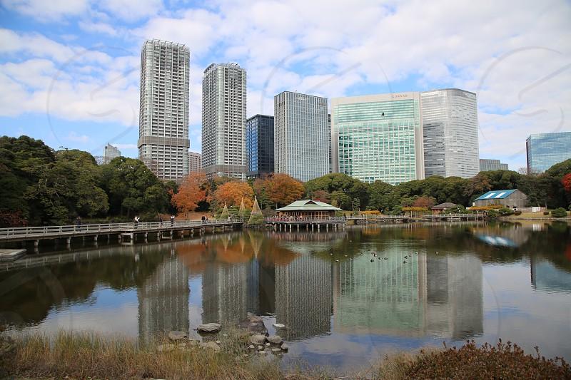 Fall color Tokyo Japan photo