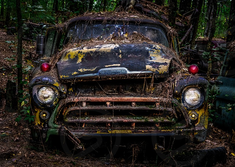 There is a place in North Georgia called Old Car City. It is an absolute playground for photographers. It is a family owned business that has been around for about 90 years. There are 34 acres of woods with about 4000 old cars ranging from the early 20th century to the early 1970s. This old truck is one of them and I thought I would give it an evil foreboding vibe. photo