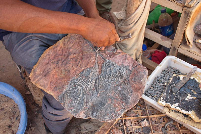 Midsection of a man cleaning rock with fossil photo