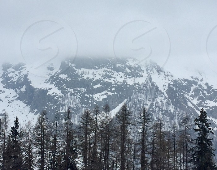 Mountains fog trees winter Mont Blanc Italy Courmayeur snow photo
